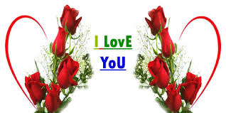 Love Flowers Latest Sms Funny Jokes Love Shayari In Hindi U0026 English Fun