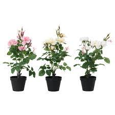 artificial flowers u0026 artificial plants ikea