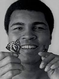 float like a butterfly sting like a bee hone your skills with