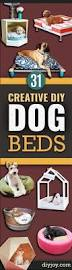 Best Dog Bed For Chewers Best 25 Pvc Dog Bed Ideas On Pinterest Durable Dog Beds Diy