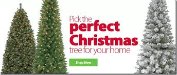 walmart has all their trees on sale grocery shop for
