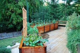Deck Garden Ideas Planter Design Ideas Deck Traditional With Planter Boxes Raised