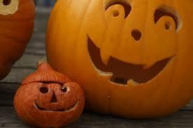 free images orange produce small halloween child jack o