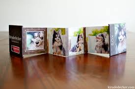 pet photo albums dedecker photography arizona smile for a cure