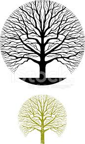 tree symbol oak tree symbol illustration stock vector freeimages com