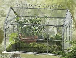 download antique terrarium solidaria garden