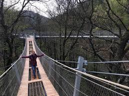 Bad Harzburg Burgberg Hängebrücke Für Einsteiger Im Baumwipfelpfad Bad Harzburg Monika