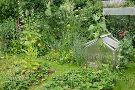 fruit and vegetable garden layout the vegetable garden an