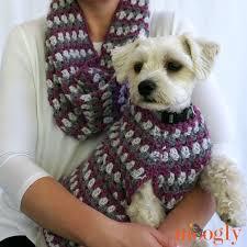 crochet pattern for dog coat well dressed dog coat moogly