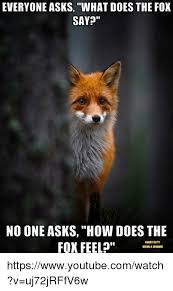 What Does The Fox Say Meme - 25 best memes about video what does the fox say video what