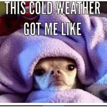 Memes Cold Weather - this cold weather got me like meme on me me