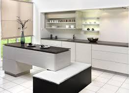 unique handbook of contemporary kitchen styles kitchen design