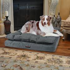 costco pet beds kirkland signature pillow top orthopedic pet napper in blue