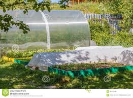 greenhouse for vegetable garden greenhouse and seedbed in the vegetable garden stock image