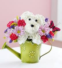 Dog Flower Arrangement Playful Pup 1800flowers Dog Arrangement In Sutton Ma Posies U0027n