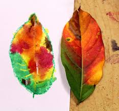 smart class fall leaves crayon resist paintings
