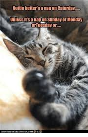 Caturday Meme - nuttin better n a nap on caturday unless it s a nap on sunday or
