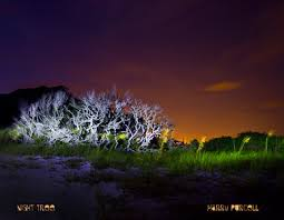 Light Painting Landscape Photography Light Painting Photography Hjpurcell