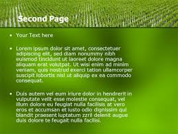 rice paddies powerpoint template backgrounds 05325