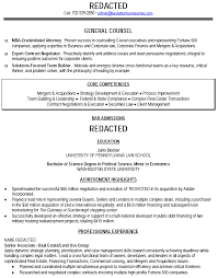 C Level Resume Samples by Bar Resume Examples