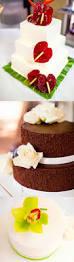 Cake Bakery Kauai Bakery Icing On The Cake Kauai Wedding Cake Bakery In