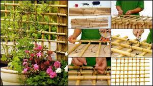 Diy Garden Trellis Ideas Diy Bamboo Trellis