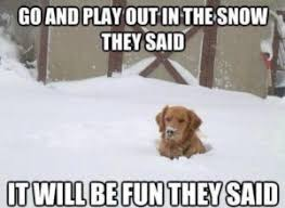 Funny Snow Meme - snow memes best funny snow pictures from our collection