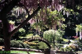Botanical Gardens Huntington Huntington Botanical Gardens California Huntington Botanical