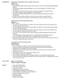 free resume format for accounts executive job role resume format for accountsecutive awful of best download