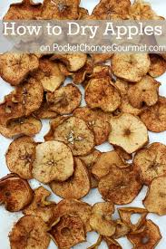 how to apples 6 uses for dried apples pocket change gourmet