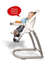 Forest High Chair Babybj纐rn High Chair House And Home High Chairs