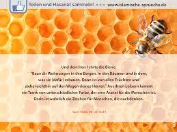 islam sprüche zum nachdenken die heilende wirkung des honigs http islamische sprueche de