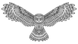 Patterned Flying Owl Drawing Illustration Vector Flying Owl Black And White Zentangle Stock