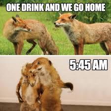 Taxidermy Fox Meme - bad taxidermy fox tumblr