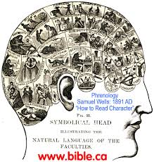 Brain Mapping The Brain And Mental Illness Modern Psychiatry Is Neo Phrenology