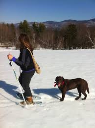 Vermont traveling with pets images Pet friendly travel stowe vermont jpg