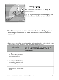 worksheet evolution packet natural selection evolution