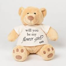 will you be my flower girl gift kids toys gorgeous honey will you be my flower girl gift