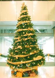 decoration packages opulent gold package tree