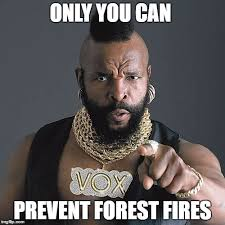 Only You Can Prevent Forest Fires Meme - mr t pity the fool meme imgflip
