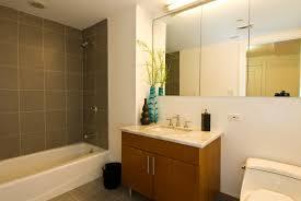small bathroom deisgn without bath tub bathroom bathroom remodel