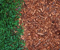 Best Type Of Mulch For Vegetable Garden - should i mulch my garden in fall and how to prepare
