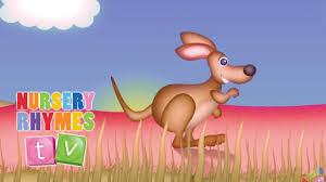 the kangaroo song nursery rhymes tv baby and kids preschool