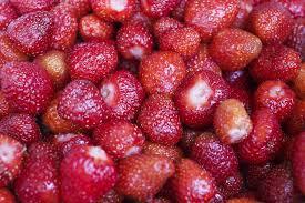 your indoor small garden grow strawberries in containers infobarrel