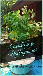 Hydroponics Vegetable Gardening by Hydroponic U0026 Aeroponic Gardening The Coastal Homestead