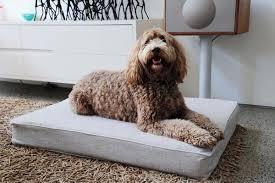 Comfortable Dog Dog Beds Australia Designer Dog Beds For Sale Organic Dog Beds