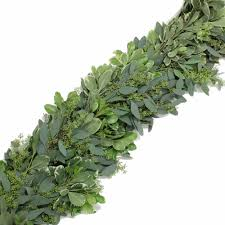 eucalyptus and variegated pittosporum fresh garland