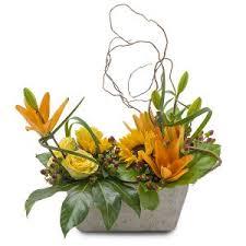 Flower Delivery Houston Scent U0026 Violet Summer Flowers Summer Plants U0026 Gifts For