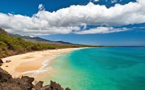 the best beaches for snorkeling in maui