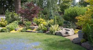 Water Ponding In Backyard Top 3 Reasons You May Have Standing Water In Yard